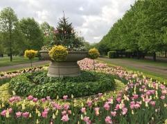 Ei ehkä epäselvää, mutta The Regent's Park meni mun puistolistan ykköseksi.