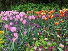 Kukka istutuksia St James's Parkissa.