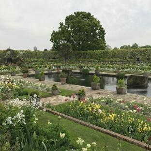 Tuhannet kukat Dianan muistopuutarhassa.
